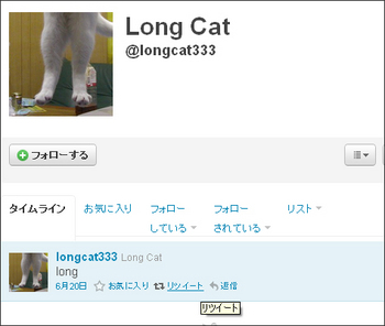 longcat-on-twitter.jpg